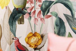 Kotori  by  Christian Fischbacher