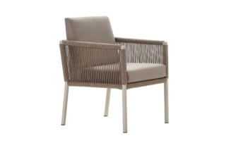 Club dining chair  by  solpuri