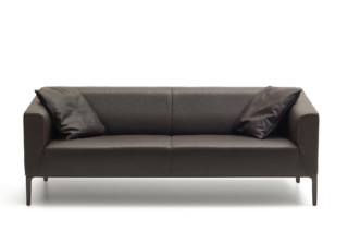 DS-161 sofa  by  de Sede