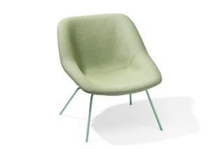 H55 armchair  by  Lampert