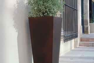 I Khéops planter II  by  CYRIA