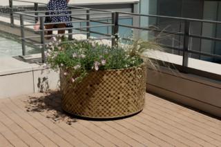 Elinium planter  by  CYRIA
