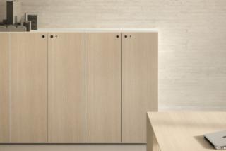 Multipliceo Quadro locker  by  Fantoni