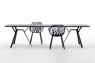 Radice Quadra rectangular table  by  Fast