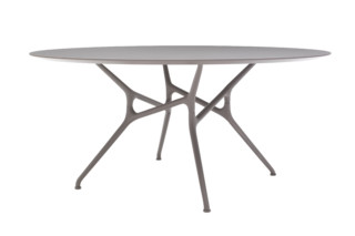 BRANCH TABLE  von  Cappellini