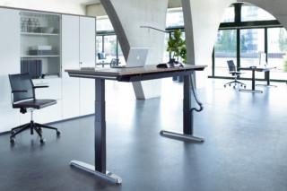 Thales Steh-/Sitztisch Profi  von  Hund Möbelwerke