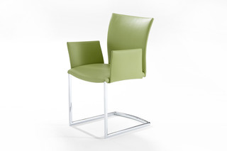 2071-I Nobile Swing Soft with armrest  by  DRAENERT