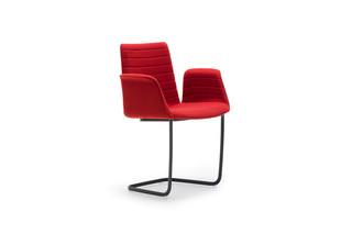 Flex armchair  by  Andreu World