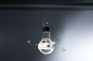 Butterflies dreaming  von  Ingo Maurer