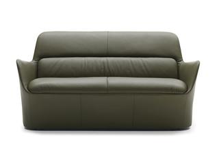 DS-110 Sofa  von  de Sede