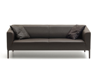 DS-161 Sofa  von  de Sede