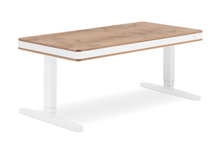 T7 desk  by  moll