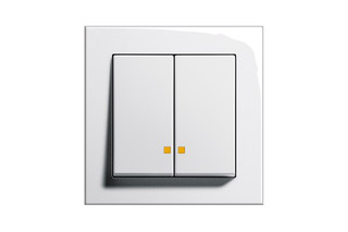 E2 control switch  by  Gira