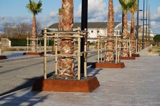 Solea Baumgitter quadratisch  von  CYRIA
