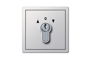 Flächenschalter Schlüsselschalter  von  Gira