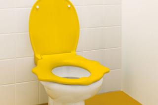 Geberit Bambini Stand-WC Löwentatzendesign  von  Geberit
