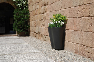 Petula planter I  by  CYRIA