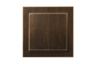 LS Design Switch in antique brass  by  JUNG