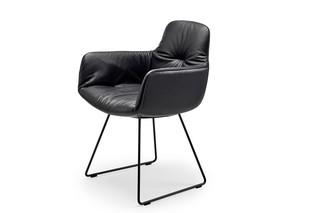 Leya armchair high with skid frame  by  Freifrau