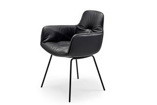 Leya armchair high with steel frame  by  Freifrau