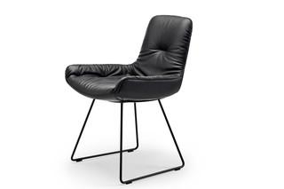 Leya armchair low with skid frame  by  Freifrau