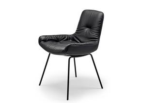 Leya armchair low with steel frame  by  Freifrau