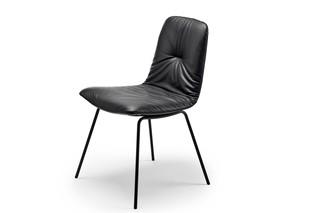 Leya chair with steel frame  by  Freifrau