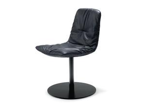 Leya chair with central leg  by  Freifrau