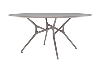 BRANCH TABLE  by  Cappellini