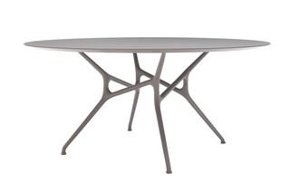 BRANCH TABLE  von  Cappellini