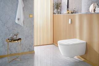 ViClean-I 100  by  Villeroy&Boch Bath&Wellness