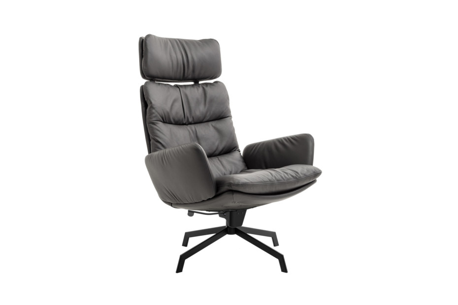 Arva Lounge lounge chair