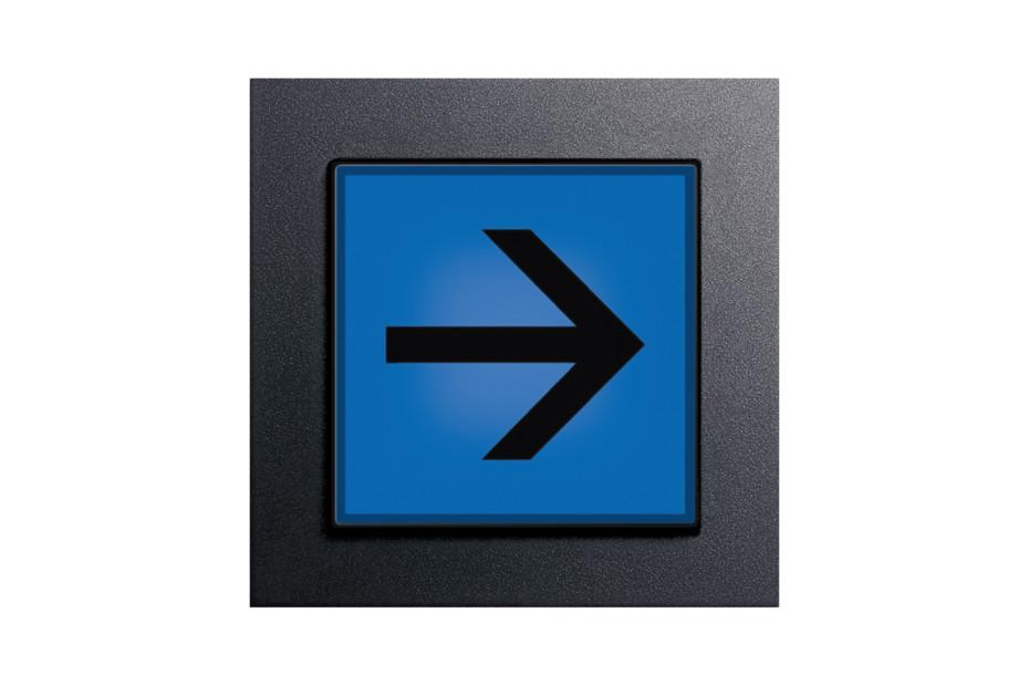 E2 Orientierungsleuchte mit Piktogramm