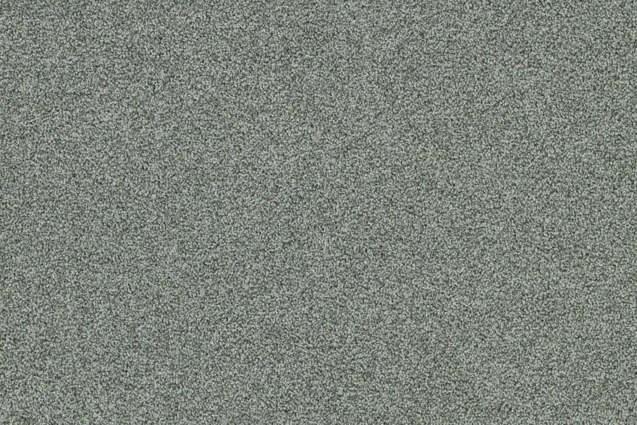 Polichrome Stripple