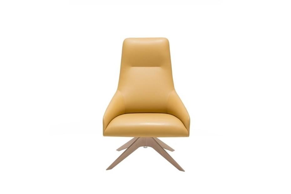 Alya wooden base lounge chair