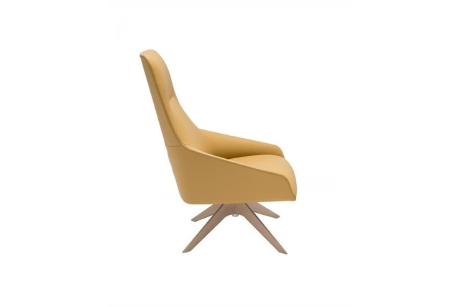 Alya wooden base lounge chair