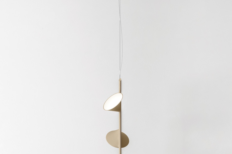 Orchid suspension 3