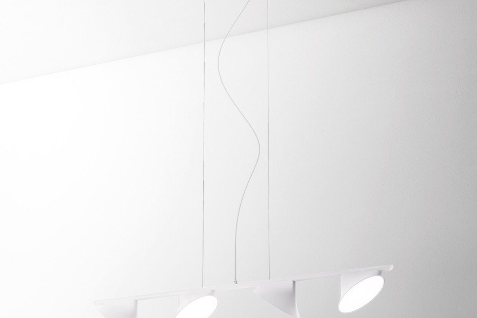 Orchid suspension 4