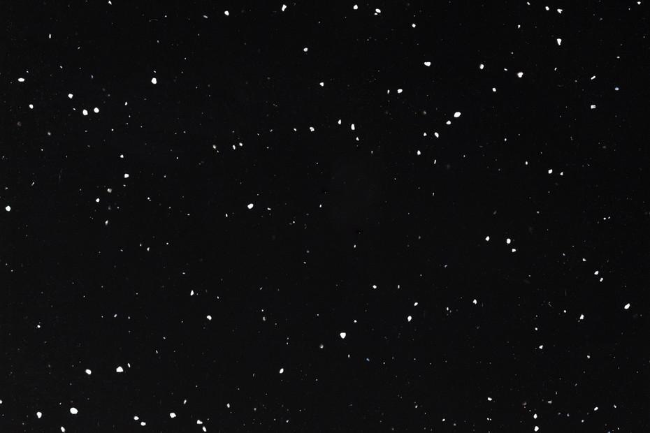 0903. Night Nature