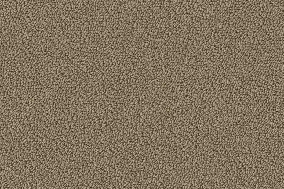 Accor 1000 Formatteppich