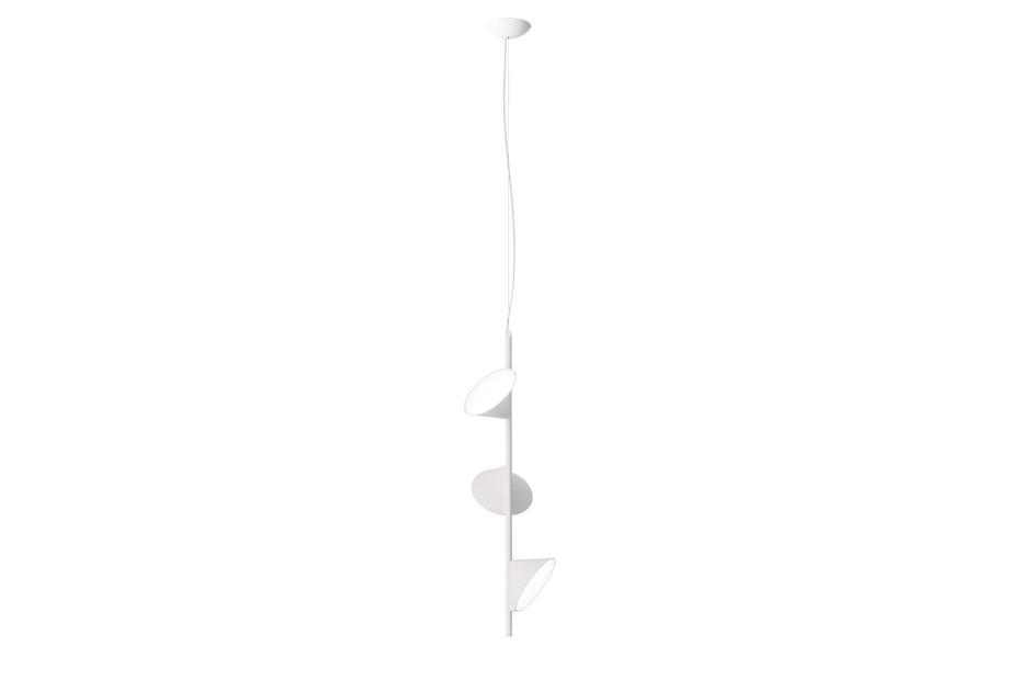 Orchid suspension 3