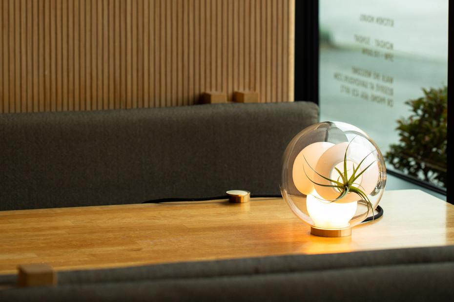 38V Table Light