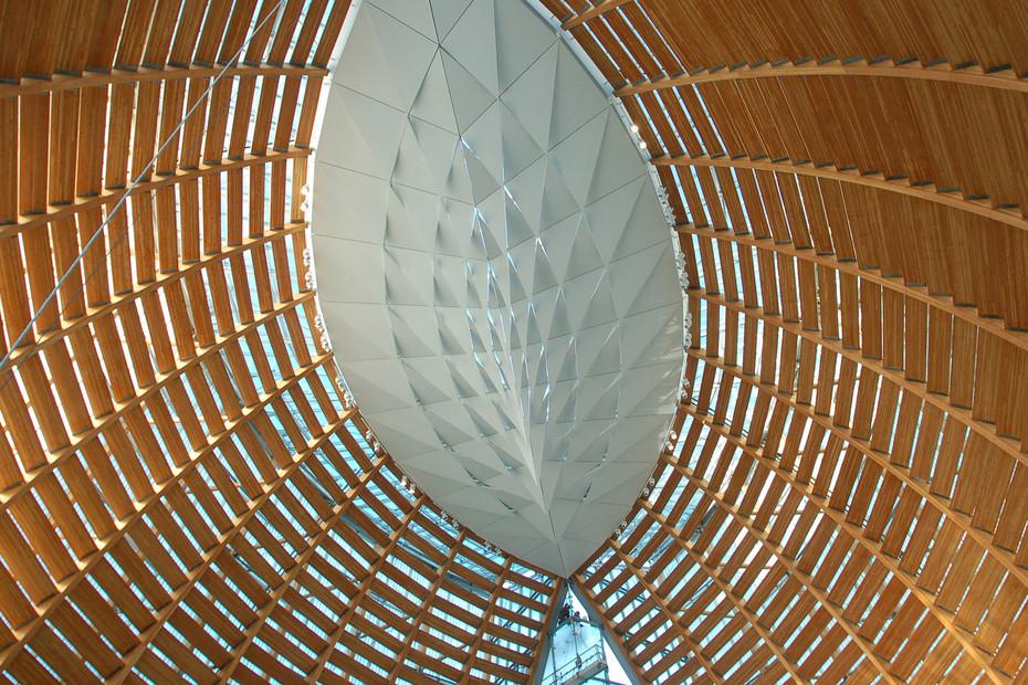 Customised ceiling