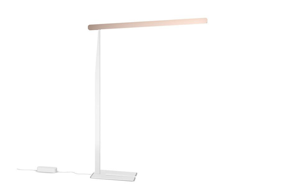 Mito terra table top