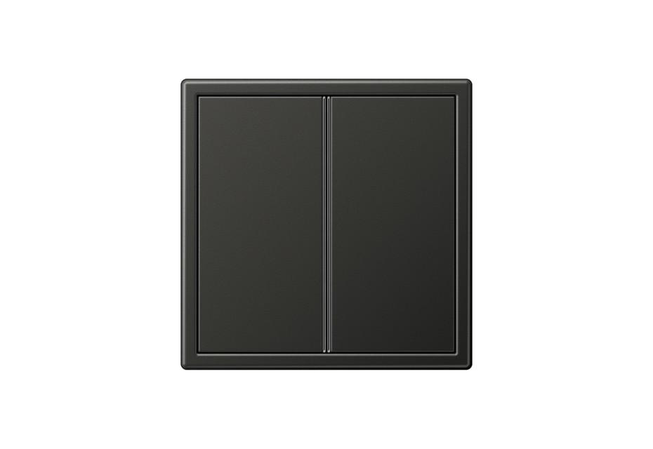 LS 990 F40 Tastsensor 2fach in anthrazit