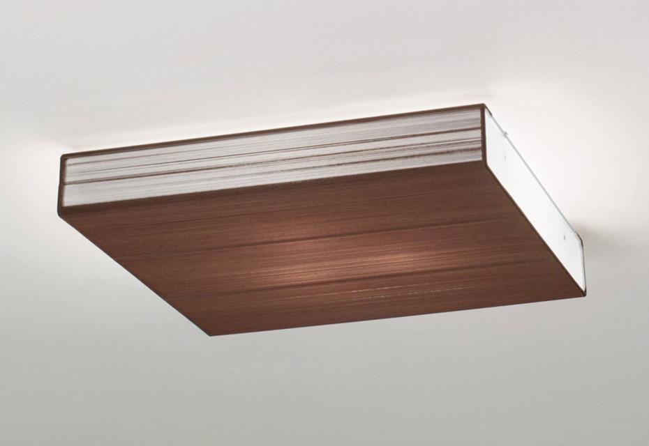 Clavius ceiling CLAVIU