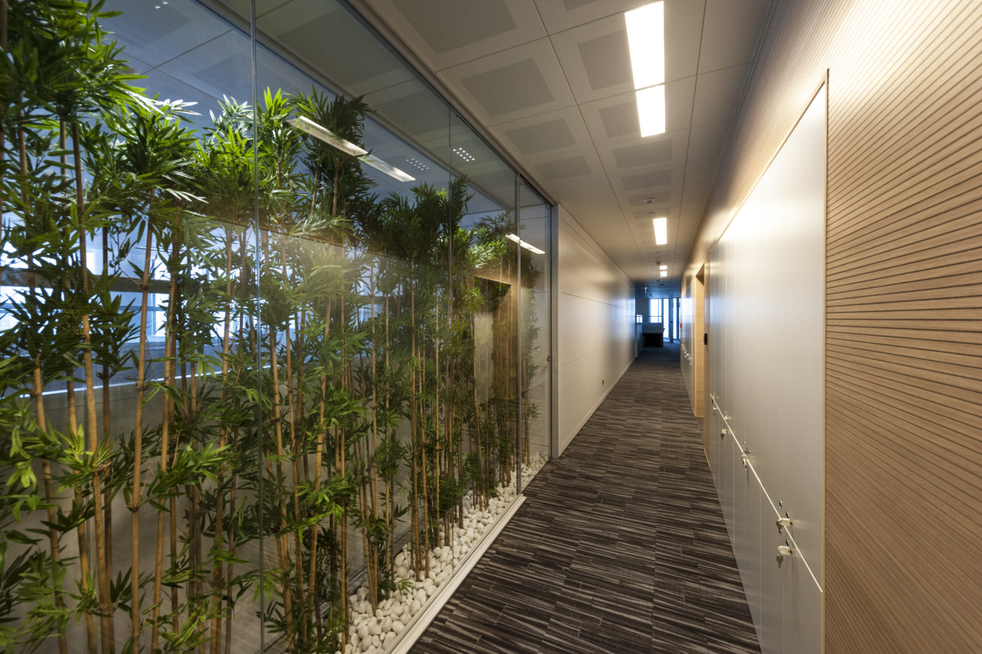 Green zones on the floors with open space offices form an exciting contrast to the architecture.