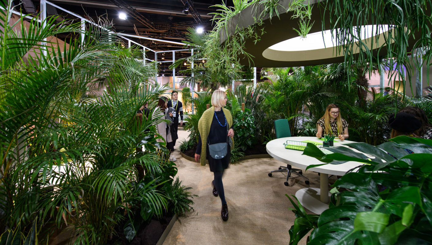 Green lead: Productivity in offices with plants is up to 15 percent higher than in those without.