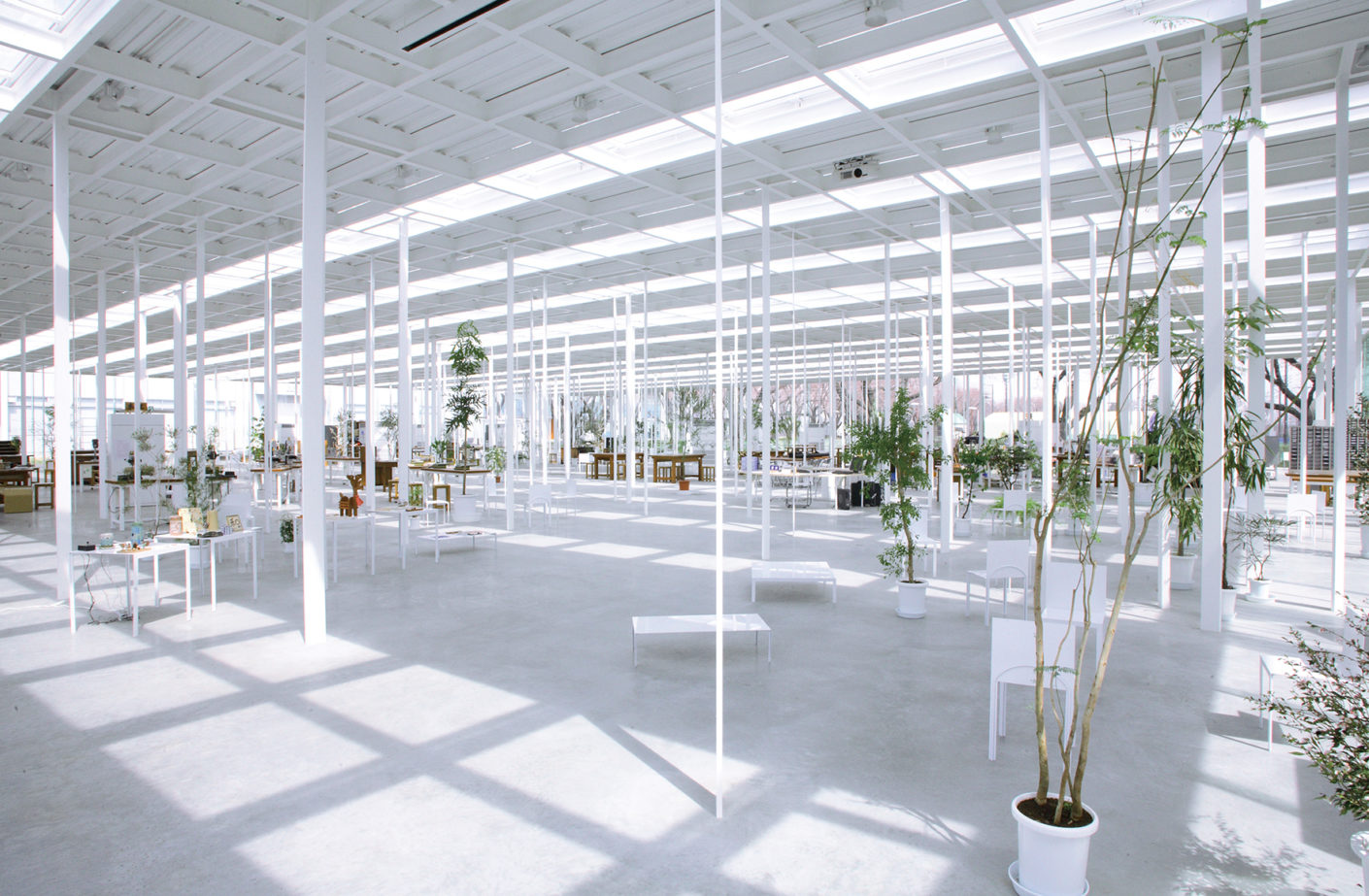 At the Kanagawa Institute of Technology's KAIT workshop, which Ishigami built in 2008, the roof rests on 300 slender supports.