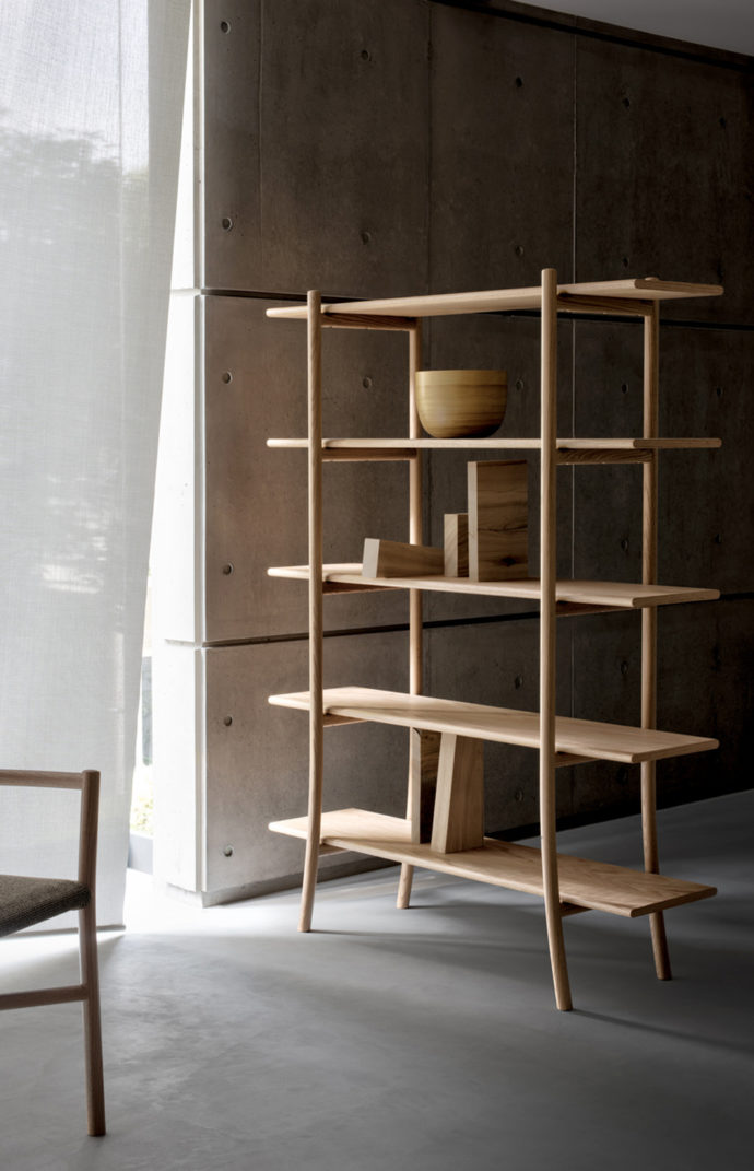 "Shelves ""Skyladder"""